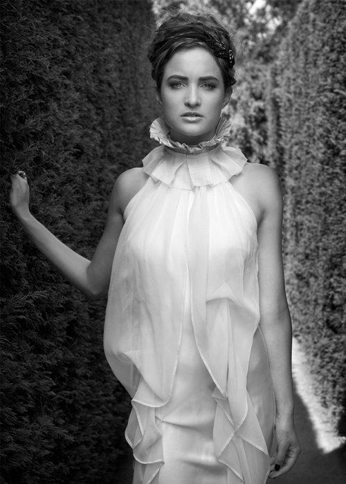Victorian collar/ Airy dress